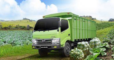 Hino-Dutro-300-Series